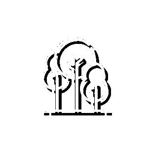 icon-arborizados2